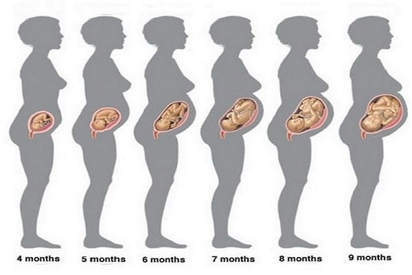 Tests For pregnant woman